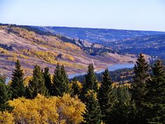 Elkwater located in the Alberta side of Cypress Hills Interprovincial Park! Saskatchewan Canada, Cypress Hill, Canada Travel, Small Towns, Great Places, Addiction, Bridge, Places To Visit, Gems