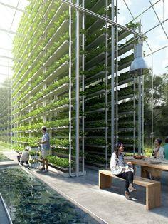 ReGen Villages Designed by EFFEKT #verticalfarming #hydroponicgardening