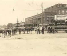 Eufaula Lumber Company in Eufaula, Alabama early 1900's.....that fountain and tall building are still there.