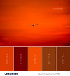 Color Palette Ideas from Sky Red Orange Image Paint Color Combos, Colour Combinations, Paint Colors, Color Schemes, Orange Color Palettes, Colour Pallete, Red Sky At Morning, Colour Board, Pallets