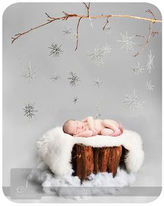 I have a white branch, and Rach has snow (spider webs), I have logs outside in a pile, and I just need some snowflakes and this could make a great scene for Elise 6 month photo!