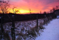 Snowy fence line at sunrise in Ritchie County