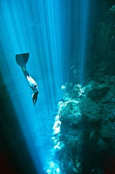 Freediving, Underwater Freedive Photography & Freedive Training in Cenotes, Mexico