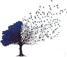 tree of life/birds