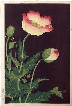 Ohara Koson (Shoson, 1877-1945) Poppies, woodblock print, ca. 1927. SOLD.