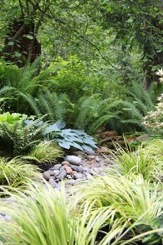 Plant the banks of your creek bed. Choose plants that will grow toward and lean over your creek bed. Ferns, rhododendron, sedges, hostas and dwarf hemlocks are all suitable choices. When arranging your plants, remember to repeat specific plants from bank to bank, staggering them so that they aren't directly across from each other. This will establish a rhythm to carry the eye through the space and give a more natural, homogenous look.