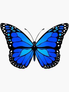 Butterfly Discover Blue butterfly Sticker by Gaspar Avila Cute Butterfly, Butterfly Design, Butterfly Painting Easy, Blue Butterfly Tattoo, Butterfly Pillow, How To Draw Butterfly, Butterfly Stencil, Butterfly Clip Art, Butterfly Template