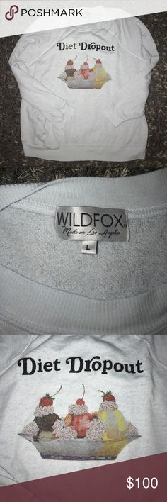 LIKE NEW WILDFOX DIET DROPOUT RARE IN A LARGE🍩 Like new RARE WILDFOX SWEATER in a large. Light blue in color. Only wore and washed once and hung to dry. PRICE IS FIRM. ❌NO TRADES❌ Wildfox Sweaters