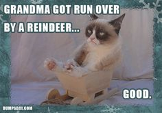 Grumpy Cat Christmas – 20 Pics