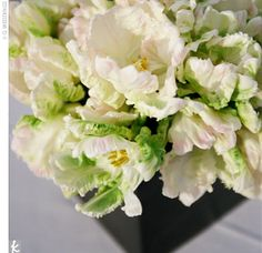 Bridal bouquet? Like the floaty blooms.