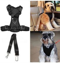 Pet Dog Cat Car Auto Vehicle Safety Harness with Tether Seatbelt Chest Plate Car Dog Harness, Best Seat Belt Car Harness Restraints Seatbelts for Pets Dogs Adjustable >>> You can find more details by visiting the image link. (This is an affiliate link) #DogHarnesses