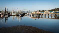 Beautiful Newport - Derek Helt (newportpreacher)s Photos