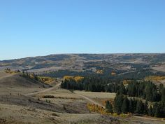 Cypress Hills, Alberta/Saskatchewan British North America, Cypress Hill, World View, Places Ive Been, Canada, Mountains, Random, Travel, Beautiful