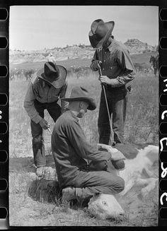 Cowboys Branding, Montana 1939. Celebrate National Day of the Cowboy by reading our fictionalized Q & A with Toussaint, Montana's cattle inspector and part-time deputy sheriff, Gabriel Du Pré! http://www.openroadmedia.com/blog/2013-07-24/Meet-the-Cowboy-Gabriel-Du-Pré