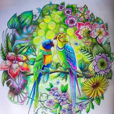 Take a peek at this great artwork on Johanna Basford's Colouring Gallery!  Davlin Publishing #adultcoloring