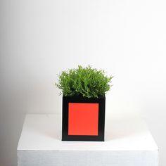 Small Hicks Planter - Red