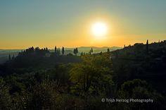 Under the Tuscan Sun   Trish Herzog Photography