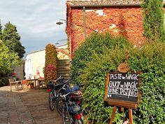 Quando formos a Toscana, certamente provaremos vários Chianti's ....