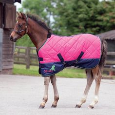 125 Best Horse Blankets Images
