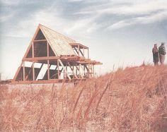 Paradise Backyard: Andrew Geller - Beach Houses