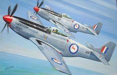 2 Squadron South African Air force - P51D  (F51D) Mustangs - Korea (1950-1953) Ww2 Aircraft, Military Aircraft, Wright Flyer, South African Air Force, F14 Tomcat, P51 Mustang, Ww2 Planes, Korean War, Aviation Art