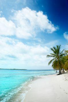 Descubre los inigualables encantos tropicales de la #RivieraMaya, el destino en donde se hará realidad tu sueño de disfrutar de un verdadero paraíso terrenal. http://www.bestday.com.mx/Vacaciones-Todo-Incluido/Hoteles/Riviera_Maya/