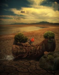 Only a generation of readers will spawn a generation of writers.  — Steven Spielberg  #writing #amwriting  Gestandene