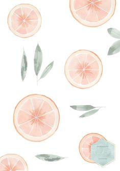 Watercolor Grapefruit Illustration Print by HandmadeKADO Watercolor Grapefruit Illustration Print Restaurant Decor Fruit Print Boho Art Prints New House Gift Food Illustration Watercolor Fruit Wallpaper Food, Watercolor Wallpaper, House Gifts, New Home Gifts, Fruits Drawing, Fruit Print, Watercolor Fruit, Homescreen Wallpaper, Food Illustrations