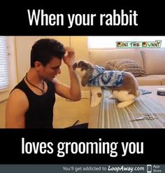 Rabbit helps with grooming