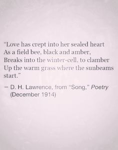 Love has crept into her sealed heart as a field bee, black and amber, breaks into the winter-cell to clamber up the warm grass where the sunbeams start. Love Words, Beautiful Words, Dh Lawrence, Meant To Be Quotes, Love Others, In This World, Quotations, Literature, Wisdom