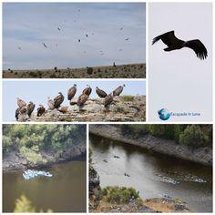 Rezervatia naturala Hoces del Rio Duraton Places, Lugares