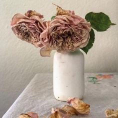 Dried roses from my garden