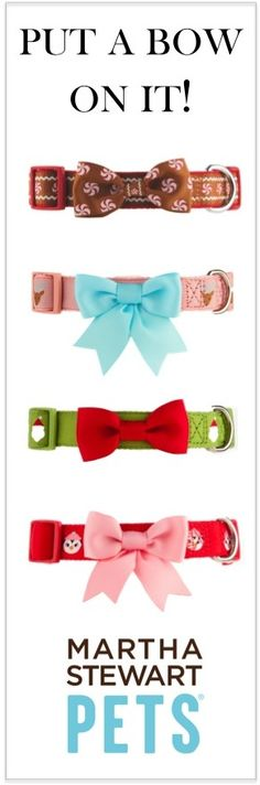 #MarthaStewartPets has so many fun and festive collars this holiday season, how do you choose just one? #pets #petsmart THIS IS SUPER ADORABLE
