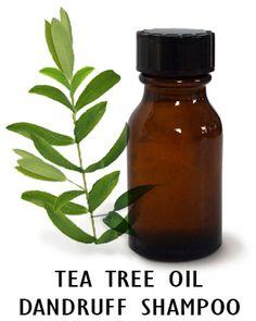 DIY tea tree shampoo