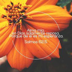 Alma mía, en Dios solamente reposa, porque de el es mi esperanza. Sal 62.5
