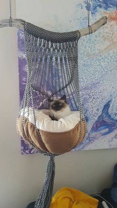 One of a kind handmade macrame cat bed. Black & white rope, coral or natural cot… ) ) One of a kind handmade macrame cat bed. Black & white rope, coral or natural cot… Crazy Cat Lady, Crazy Cats, Cat Room, Cat Sleeping, Black Bedding, Cat Furniture, Luxury Furniture, Furniture Ideas, Furniture Design