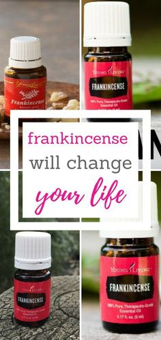 Improve your live with nothing other than Frankincense oil.