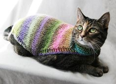 Hand Knitted Patterns For Dog And Cats Coats : 1000+ images about Crochet and knit for pets on Pinterest Dog sweaters, Dog...
