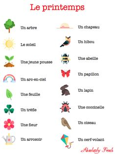 French Words Quotes, Basic French Words, French Phrases, How To Speak French, Learn French, French Language Basics, French Basics, French Language Lessons, French Lessons