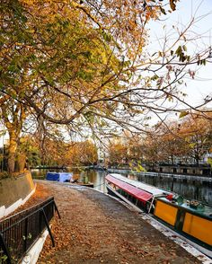 • London is... ...walking by the canal... • #london_is 🇬🇧 Because autumn is not over yet, especially in Little Venice where everything is simply gorgeous right now! ----------- 🇫🇷 Parce que l'automne n'est pas encore terminé, encore moins à Little Venice où les couleurs sont magnifiques en ce moment! . . . . . . . . . #thisislondon #igersuk #igerslondon #london #londres #photosofbritain #lovegreatbritain #visitlondon #londra #unitedkingdom #england #uk  #toplondonphoto #ilovelondon…