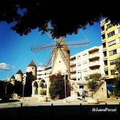 #molinos de #Palma #igersmallorca #igersbaleares #igersbalears #igersspain #mallorca #balears #illesbalears #spain #estimamallorca #mallorcatestim #balearespasoapaso #estaes_baleares #rinconesdemallorca #fotos_de_mallorca by juanaporcel
