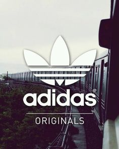 Image via We Heart It http://weheartit.com/entry/175723127/via/3311818 #adidas #airmax #junkfood #JustDoIt #Logo #look #love #Neo #nike #original #outfits #pale #sneakers #sport #summer #trainers #vintage #wallpaper #grung #stansmith #swag #squats #airone #liveyourstyle #nikeroshrun #adidasflux #adidassuperstar
