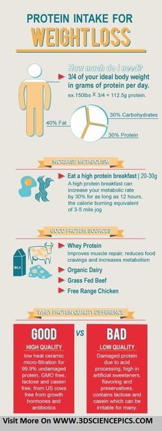 Protein Intake For Weight Loss