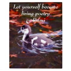 Rumi - Let yourself become living poetry - photo plaque