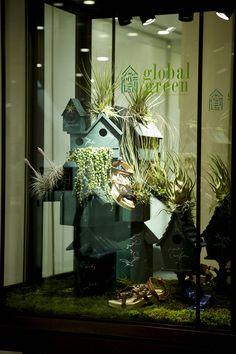 Window display - Global Green