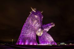 The Kelpies lit up Purple for Epilepsy Scotland