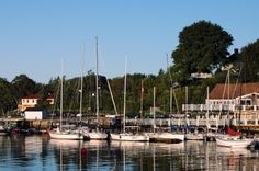 Summer in Chester Sail Boats, Nova Scotia, Chester, San Francisco Skyline, Sailing, Summer, Travel, Candle, Voyage