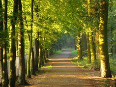 Schutterspark, Brunssum, Zuid-Limburg.