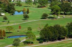 #Golfing in #PinellasPark