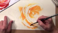 How to paint flowers - Watercolor DVD & Online Video